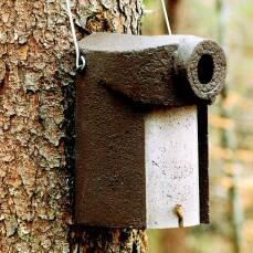Nisthöhle aus Holzbeton für viele...
