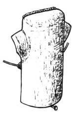 Baumläuferhöhle von Schwegler aus Holzbeton