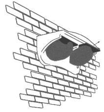 Mehlschwalben-Fassadennest Nr. 11 Schwegler