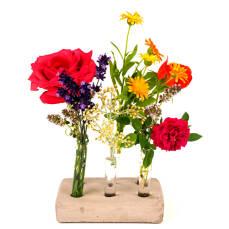 Reagenzgläser in Beton für Blumen L