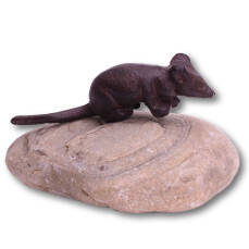 Maus auf Stein