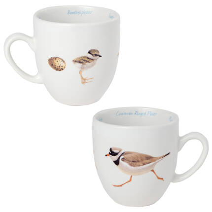 Tasse Sandregenpfeifer