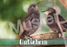 Geschenkgutschein für nistkasten-online.de