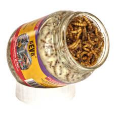 Mehlwürmer in Fett im Glas 240 g