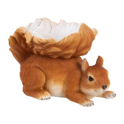 Eichhörnchen Futterschale