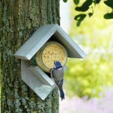Erdnussbutterhaus inklusive 2 Futtergläser für Vögel