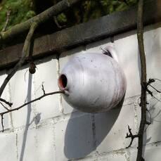 Vogeltopf kugelförmig - Nistkasten für Meisen und Sperlinge