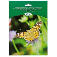 Saatmischung für Schmetterlinge